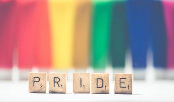 Unit 19 - Jane's Pride