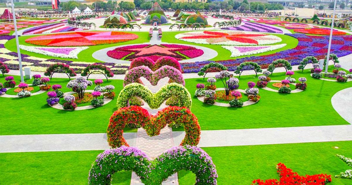 Dubai's Largest Flower Garden