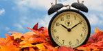 The Daylight Saving Fall Back